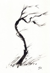 Files/1327312772 Poemas Japoneses A La Mue R176x256.jpg
