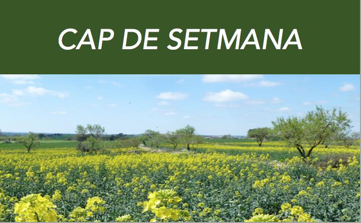 CAP DE SETMANA SOBRE EL JARDÍN AMURALLADO DE LA VERDAD DE HAKIM SANAI
