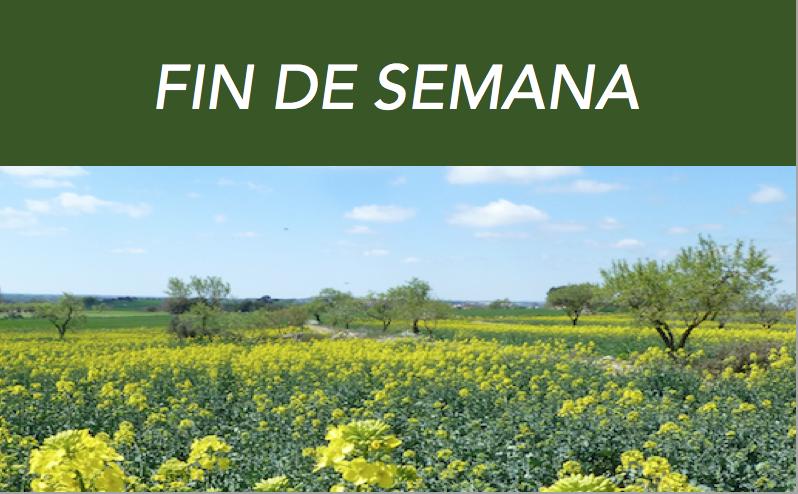 FIN DE SEMANA SOBRE EL JARDÍN AMURALLADO DE LA VERDAD DE HAKIM SANAI