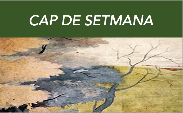 CAP DE SETMANA. Orientacions Per Al Camí Del Savi Nagarjuna, Mestre Budista