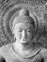 Files/1290380947 Buda2 T.jpg