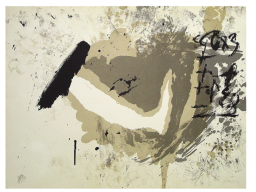 Files/1329677421 Tapies 2 R256x192.png