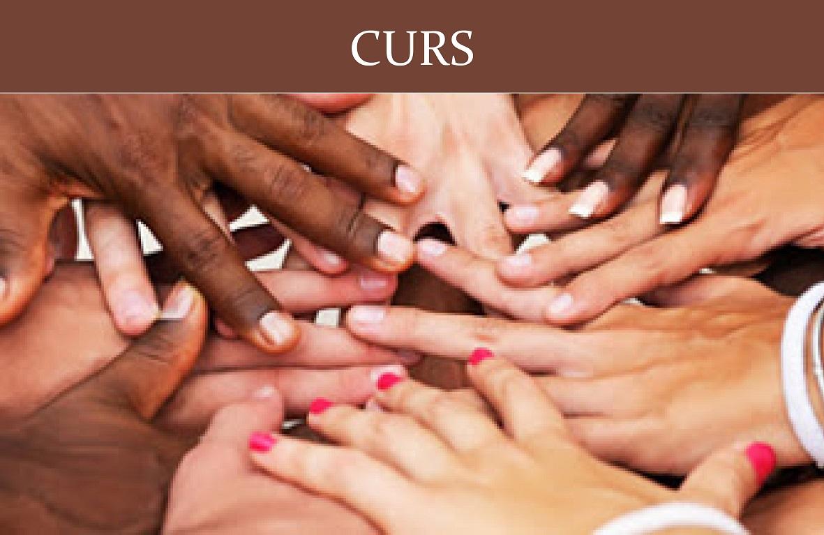 CURS: Interrelació I Convivència. Diversitat Religiosa, Espiritualitats I Conviccions No Religioses A Les Noves Societats